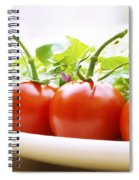 Vine Tomatoes On A Salad Plate Spiral Notebook