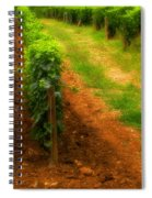 Vineyard In Burgundy France Spiral Notebook