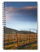 Vineyard Storm Spiral Notebook