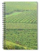 Vineyards Near St Emilion In The Mist Spiral Notebook