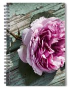 Vintage Pink English Rose And Peeling Paint Spiral Notebook