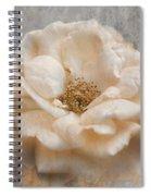 Vintage Rose I Square Spiral Notebook