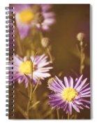 Vintage Violet  Spiral Notebook