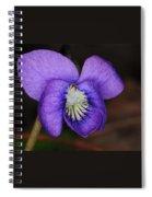 Viola Spiral Notebook