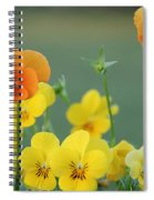 Violas Spiral Notebook