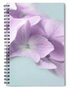 Violet Hydrangea Flower Macro Spiral Notebook