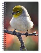 Virden  Spiral Notebook