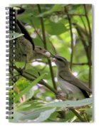 Vireo And Cowbird Spiral Notebook