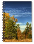 Visions Of Fall  Spiral Notebook