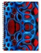Vital Network II Design Spiral Notebook