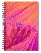 Vitamin E Crystal Spiral Notebook
