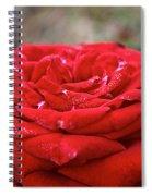Viva Red Spiral Notebook