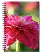 Vivid Floral Spiral Notebook