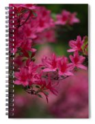 Vivid Group Spiral Notebook