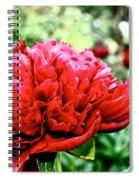 Vivid Peonies Spiral Notebook