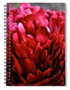 Vivid Red Spiral Notebook