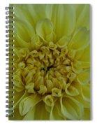 Vivid Yellow Dahlia Spiral Notebook