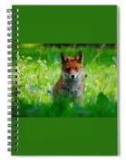 Vixen In Bluebells Spiral Notebook
