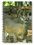 Vocal 10 Point 9544 4378 Spiral Notebook