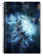 Voice Of A Thistle Spiral Notebook