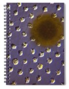 Volvox Sp. Algae Lm Spiral Notebook