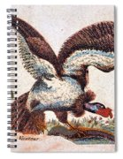 Vulture Attacking A Snake Spiral Notebook