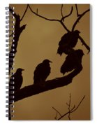 Vulture Island Spiral Notebook