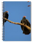 Vultures On A Branch Spiral Notebook