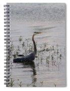 Wading Blue Heron - Ardea Herodias Spiral Notebook