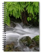 Wahkeena Falls One Spiral Notebook
