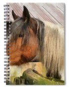 Waiting For A Stroke Spiral Notebook
