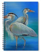 Waiting For Fish Spiral Notebook
