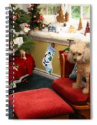 Waiting For Santa Spiral Notebook