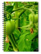 Waiting For The Harvest Spiral Notebook