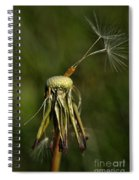 Waiting For The Wind Spiral Notebook