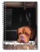 Waiting On A Friend Spiral Notebook