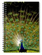 Waiting On A Line Of Blues And Greens Spiral Notebook