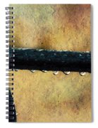 Walk Me Out In The Morning Dew Spiral Notebook