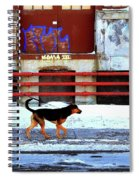 Walk On The Cold Side Spiral Notebook
