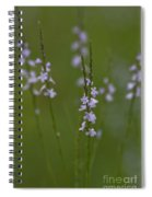 Walk With Me Spiral Notebook