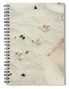 Walking Away  03 Spiral Notebook