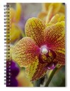 Walking On Sunshine Spiral Notebook