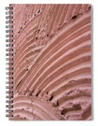 Wall. Abstract Macro Photography. Spiral Notebook