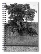 Wall Tree Spiral Notebook