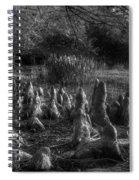 Walrus Beach Spiral Notebook