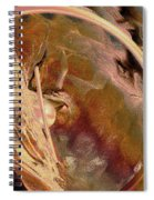 Wandering Persuasion Spiral Notebook