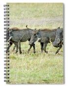 Warthogs In Masai Spiral Notebook