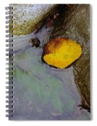 Washed Ashore  Spiral Notebook