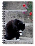 Washing Up Spiral Notebook