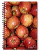 Washington Apples Spiral Notebook